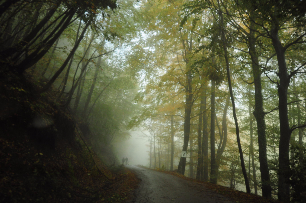 Jesen v Deželi pravljic in domišljije